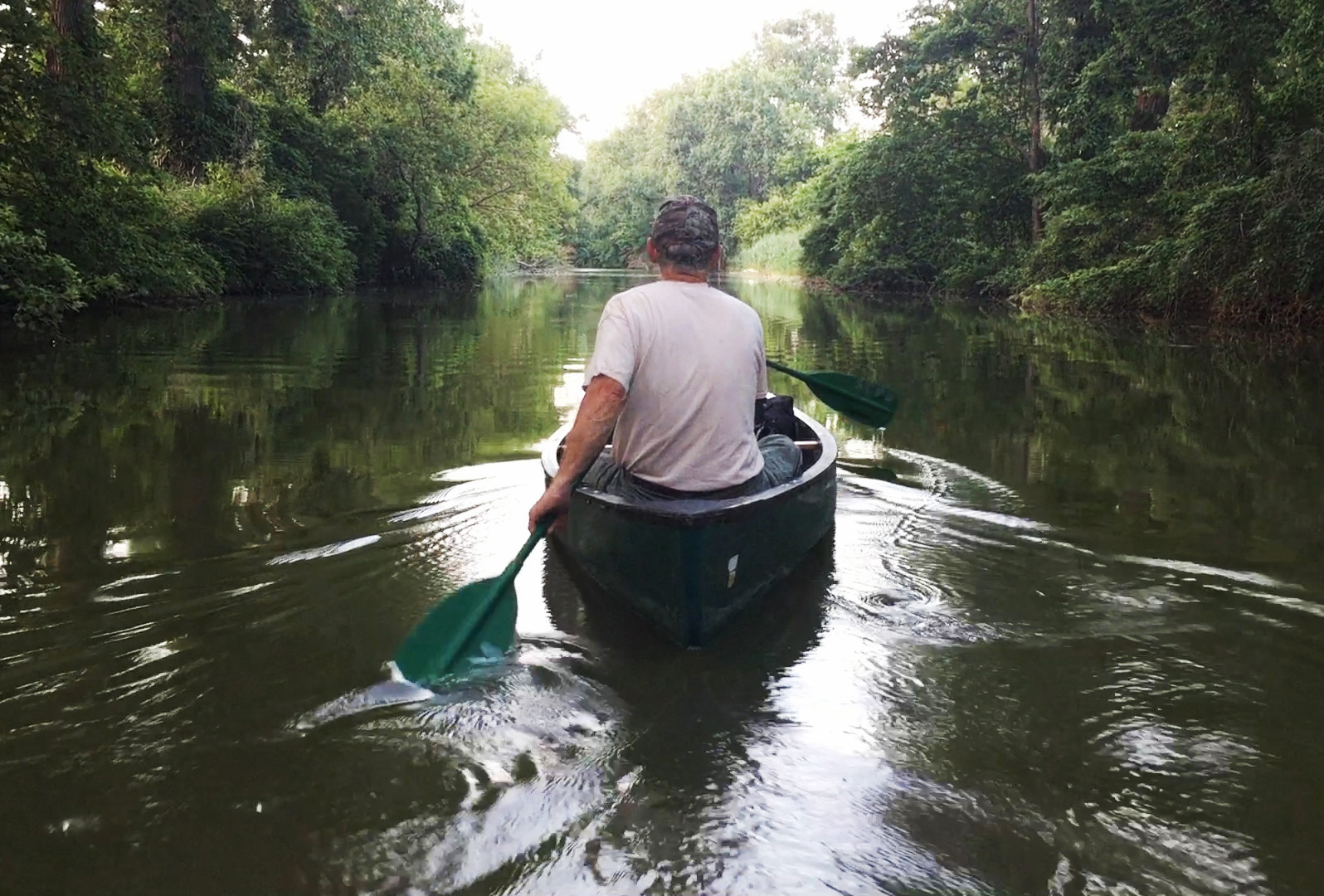 Tom Kashmer, research coordinator with the Sandusky County Park District, paddles down Green Creek on a moon lit canoe trip he lead through the Sandusky County Park District.